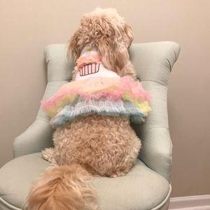 NWT Pup Party Birthday Dress / Pet Tutu